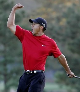 Tiger does it again!