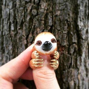 nov-sloth